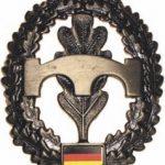 Emblem Pioniere